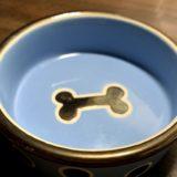 犬が餌入れをひっくり返す!台を100均で手作り?高さや、早食い防止も。
