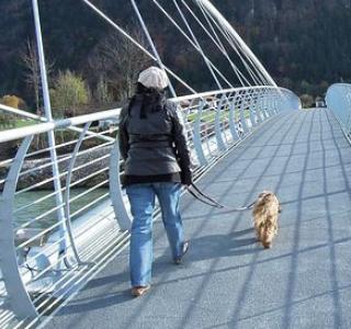 犬の散歩はしつけで。拾い食いや吠えるを解消!引っ張ると咳が出るのは大丈夫?