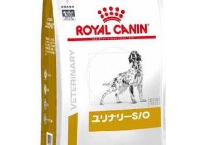 ロイヤルカナン(犬)ユリナリーS/Oとは。pHコントロールや満腹感サポートの違い。